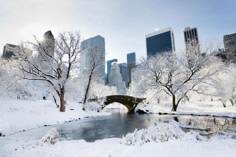 snow12n-1-web.jpg